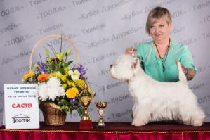 West Nest Union Jack1